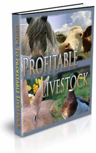Profitable livestock - The most profitable orchards ...